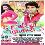 Du Hajariya Pichkari songs