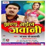 Jhand Bhayil Jawani songs