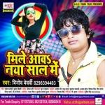 Mile Aawa Naya Saal Me songs