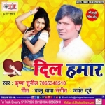 Dil Hamar songs