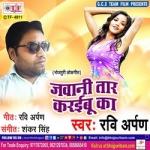 Jawani Taar Karawaibu Ka songs