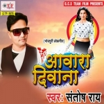 Aawara Deewana songs