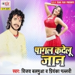 Pagal Kadelu Jaan songs
