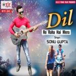 Dil Ro Raha Hai Mera songs
