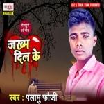 Zakhm Dil Ke songs