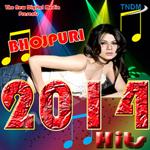 Bhojpuri 2014 Hits songs