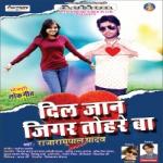 Dil Jaan Jigar Tohre Ba songs