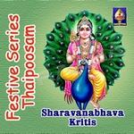 Festive Series - Thaipoosam (Sharavanabhava Kritis)
