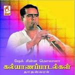 Kalyanapaadalgal songs