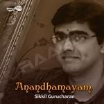 Anandhamayam songs