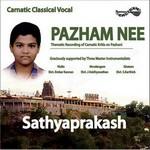 Pazham Nee songs