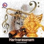 Harivarasanam - Various Instruments (Ambient) songs