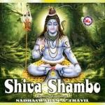 Shiva Shambo (Ambient)