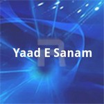 Yaad E Sanam songs
