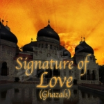 Signature Of Love songs