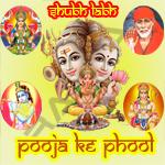 Pooja Ke Phool - Vol 2 songs