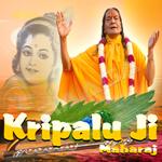 Jagatgur Kripalu Ji Maharaj - Vol 2 songs