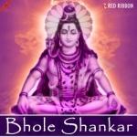 Bhole Shankar songs