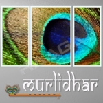 Murlidhar songs