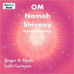 Om Namah Shivaay songs