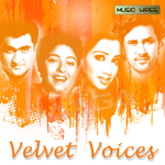 Velvet Voices songs