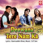 Deewana Tere Naam Ka songs