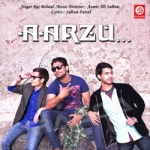 Aarzu songs