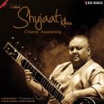 Ustad Shujaat Khan - Chakra Awakening songs