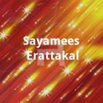 Sayamees Erattakal songs