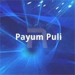Payum Puli songs