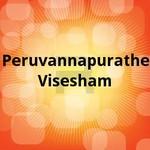 Peruvannapurathe Visesham songs