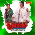Pranavam songs