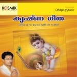 Krishna Geetham songs