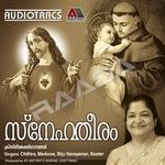 Sneha Theeram songs