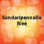 Sundaripennalle Nee songs