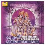 Krishna Nee Beganebaaro songs