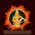 Saranam Sannidanam songs