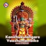 Kanichukulangare Vaazhumambike songs