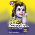 Krishna Karunnya Sindho songs