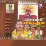 Pambadi Nagapooja songs