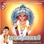 Saravanappaithal songs