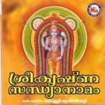 Sree Krishna Sandhyanamam songs