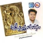 Sreekrishna Theertham songs