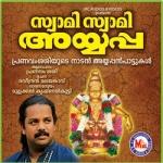 Swami Swami Ayyappann songs