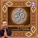 Bhajanamruthalahari songs