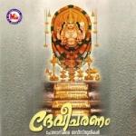 Devi Charanam