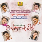 Perunnalkili - Vol 1 songs