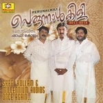 Perunnalkili 2011-2012 (Vol 2) songs