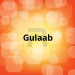 Gulaab songs