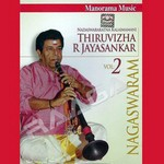 Nagaswaram - Vol 2 (Instrumental) songs
